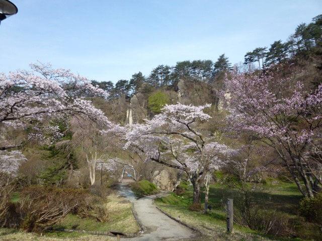 きみまち坂桜まつり