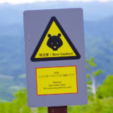 きみまち阪県立自然公園内にて熊の目撃情報が報告されてる!
