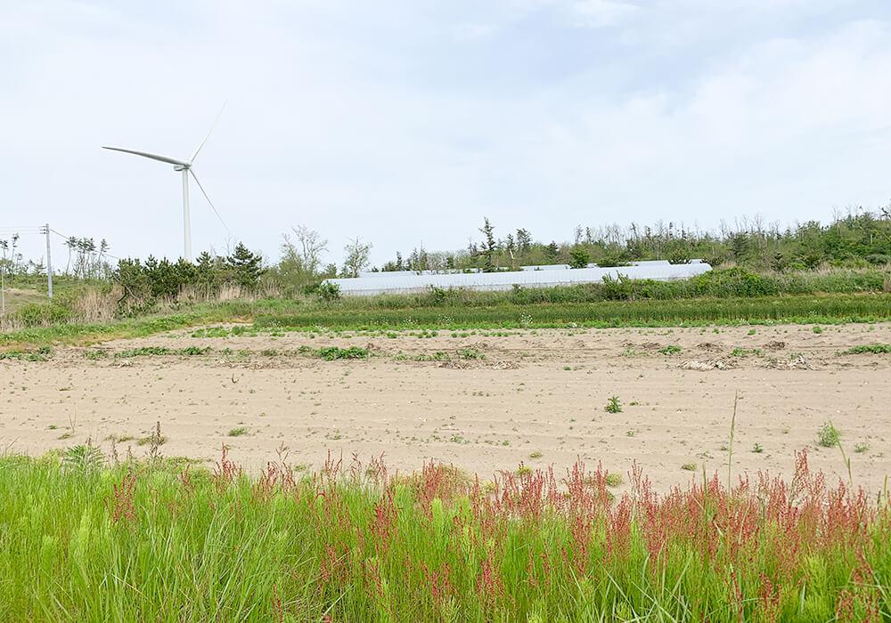 釜谷浜海水浴場までの風景1