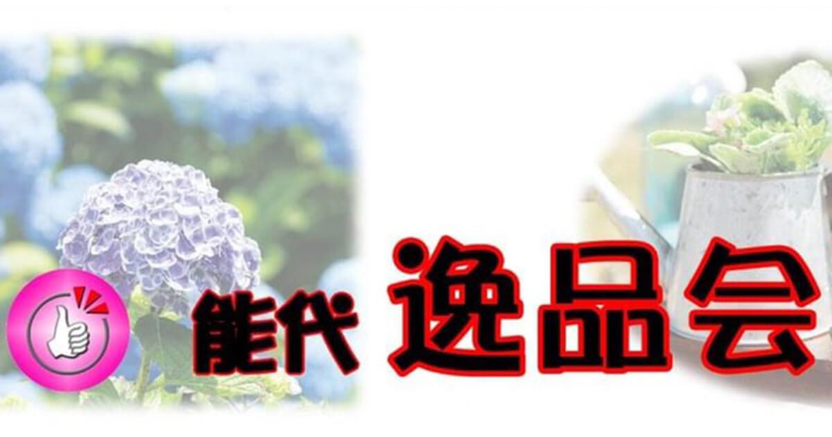 6月11日は逸品デー!