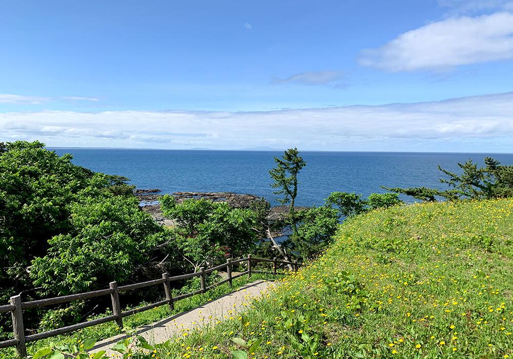 お散歩風景2
