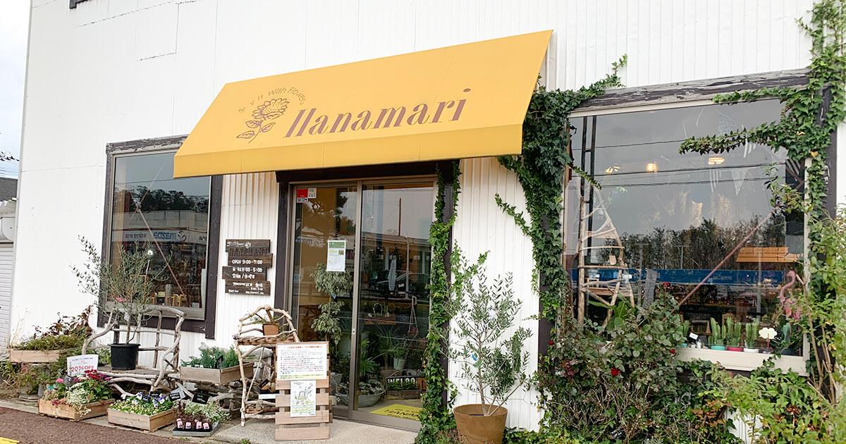 【能代市昇平岱】HANAMARIさんへ行ってきました!