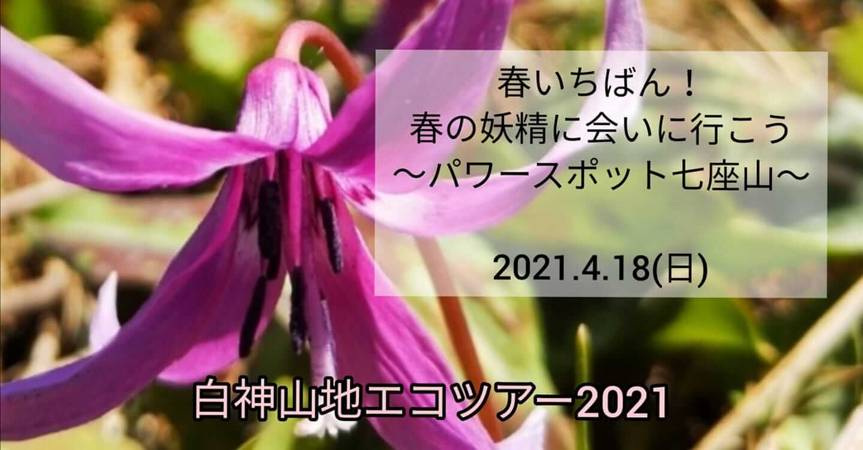 春いちばん!七座山でエコツアーが開催されるみたい!