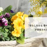 【4月13日】能代市中央公民館で「暮らしを彩る 春の寄せ植え講座」が開催されるみたい!