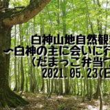 【5月23日】「白神山地自然観察会~白神の主に会いに行こう!〜」白神山地エコツアーが開催されるみたい!