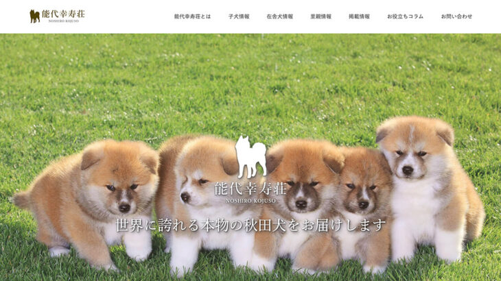【HP制作事例】能代市の秋田犬犬舎「能代幸寿荘」