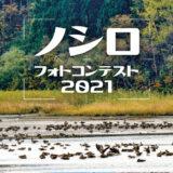 【能代市】「ノシロフォトコンテスト2021」が開催されるみたい!