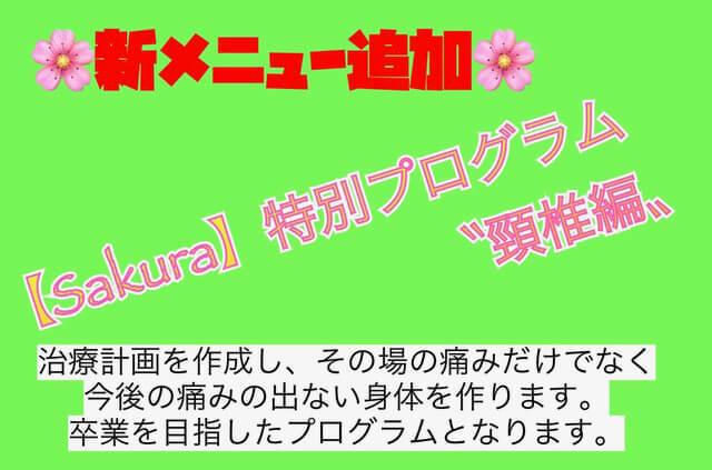 """Sakura特別プログラム""""頸椎編"""""""